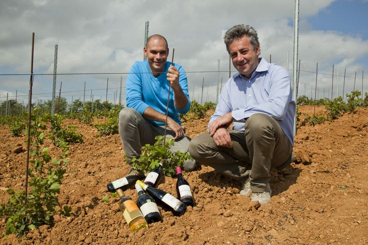 ...Andrea and Marco into new vineyard