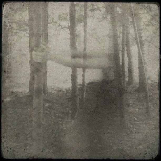 Pinned 24.6.13: iPhoneography » Susan Tuttle Photography