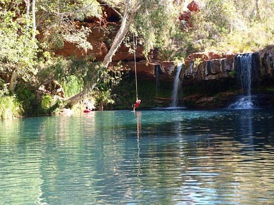 19 best pool design images on pinterest ponds dream for Intex pool koi pond