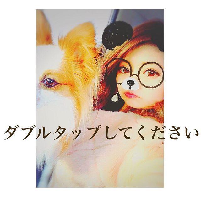 イッヌ🐶とちゃんちー♡ riendaのファーコートのふわふわ感に あーたんの耳毛のふわふわ感な💘 色味も似てて、親子でしょ?(ฅ'ω'ฅ)♪ 犬バカかよ〜♡ . 流行りに乗るよ〜💟😜💜 #ダブルタップしてください #もう寝るよ #イッヌ #愛犬 #パピヨン #あーたん #アルト #わっいのいっぬ #ファーコート #ふわふわ #rienda #selfie #SNOW #ぱち屋のねーちゃんの #流行りに乗ってみた