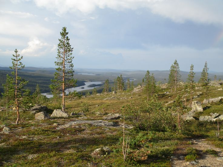 Lemmenjoki National Park