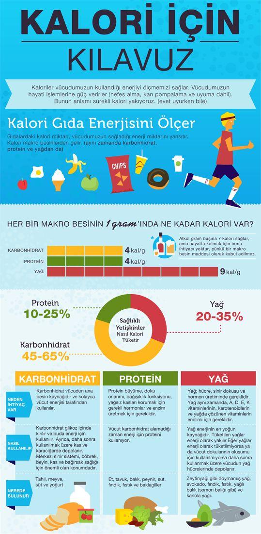 Karbonhidrat, protein, yağ