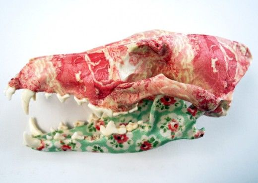 A decoupaged coyote skull.