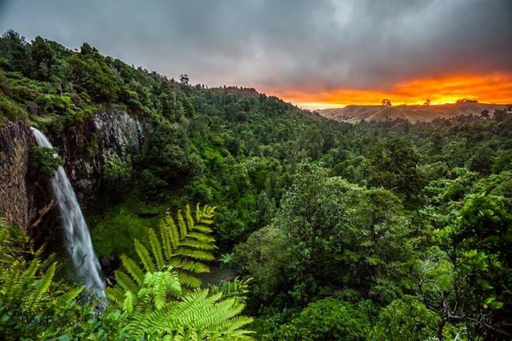 Bridal Veil falls, near Raglan, NZ :: Caleb Lloyd Photo