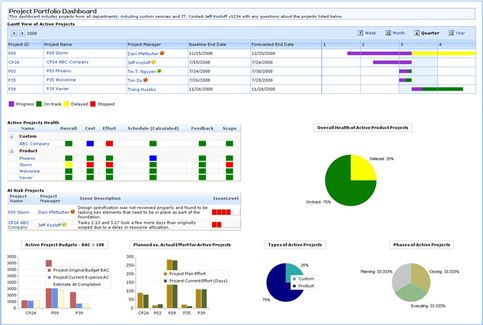 Sharepoint project portfolio dashboard web part cigar for Sharepoint dashboard templates