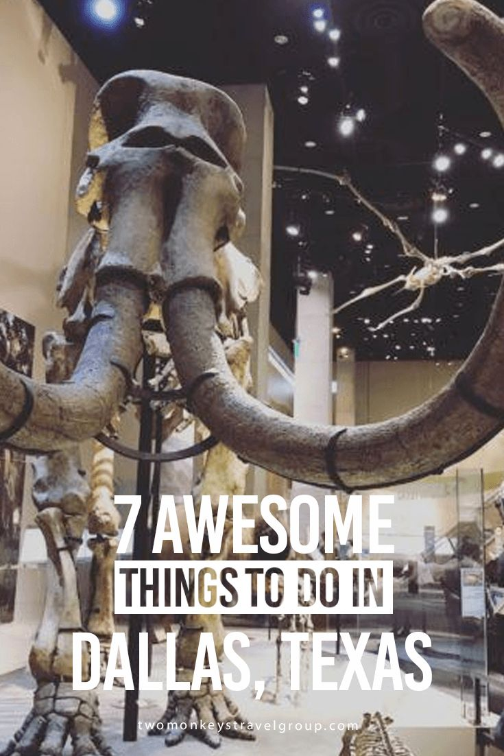 7 Awesome Things to Do in Dallas, Texas 1.Visit the Perot Museum of Nature and Science With rotating special exhibits, fossils from all over Texas and the world, and plenty of hands-on activities for children and adults alike you can easily lose half your day here. The Perot Museum is a beautiful addition to the Dallas skyline that welcomes its ... Read More