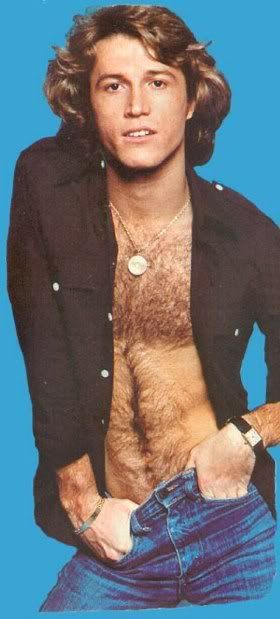 Hairy Andy Gibb. Thanks for the tip, Dan Savage! Andy Gibb was once a beautiful, kind, man!! Susan Ansley here in New Zealand.