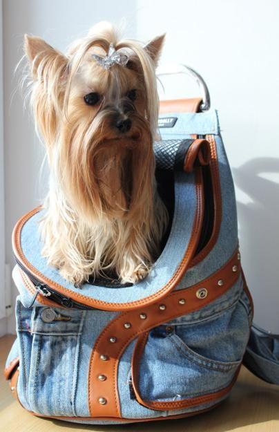 borse e supporti per gli animali domestici, moderne idee di design per viaggiare con animali domestici