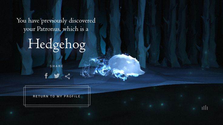 My Pottermore Patronus Is A Hedgehog And This Is How I Deal | Thought Catalog