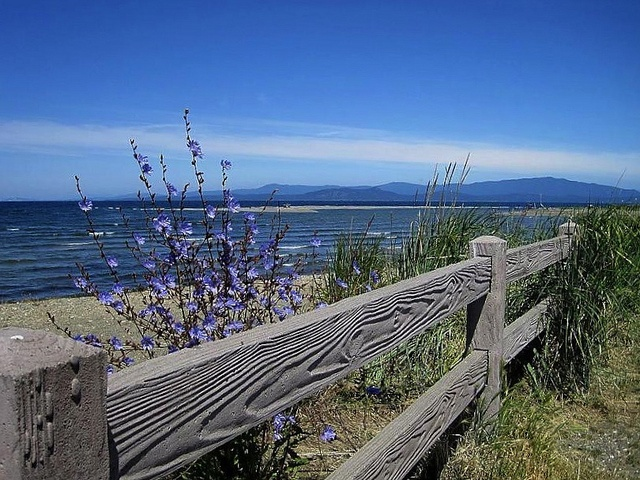 12 Best Images About Seattle And Vancouver Island On Pinterest Sculpture Parks And Stone Quarry
