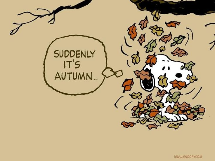 Happy Halloween, Peanuts Cartoon And Autumn