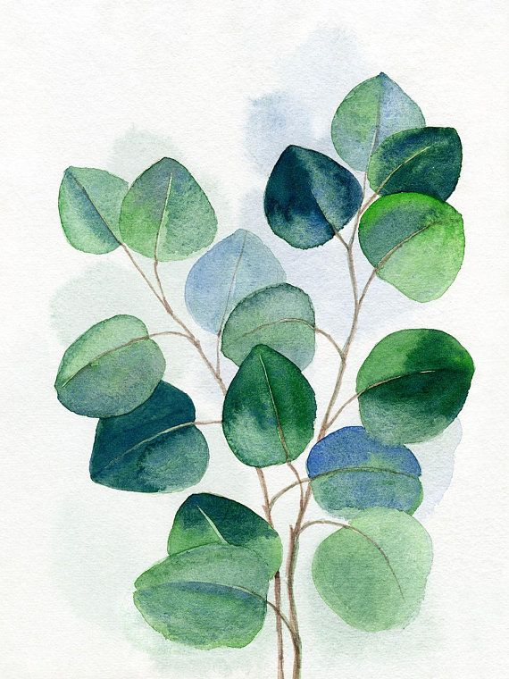 Green Leaf Painting Tropic Watercolor Monstera Tropical Banana