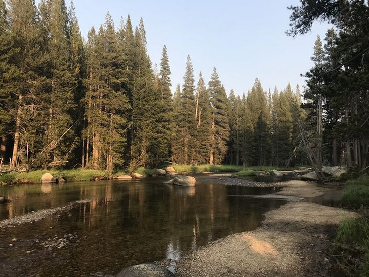 Best Rv Campgrounds In California Camper Favorites For 2019 In 2020 Pinnacles National Park Kings Canyon National Park Rv Campgrounds