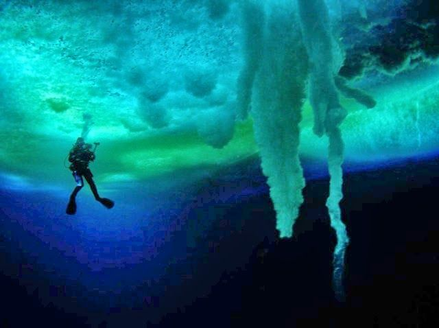 Brinicles After Sea Ice Freezes In The Arctic And