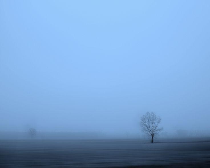 """La nebbia non è solo grigia e riempie il paesaggio di mistero, si potrebbe quasi dire che sia """"nuvole che escono dalla terra"""" in un cielo rovesciato."""