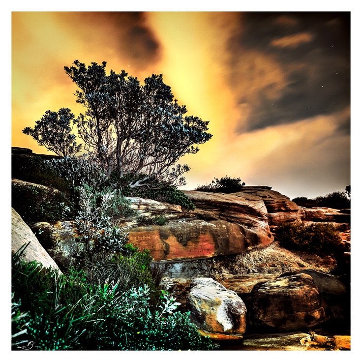 Cliffside Vegetation I by mdomaradzki.deviantart.com on @deviantART