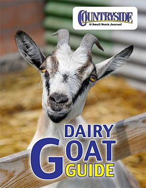 Get a FREE handbook on goat farming, including how to choose, buy, feed, milk and care for them, plus the benefits of goat milk and even cheese recipes.