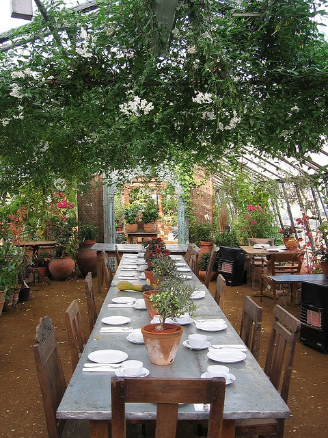 Loved eating lunch at Petersham Nurseries Cafe, Richmond, UK when we lived there