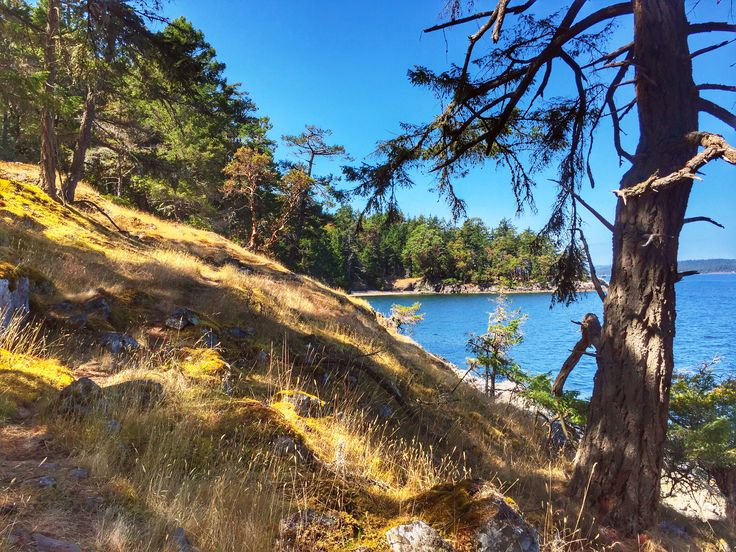 3 days on Salt Spring Island: what to see, eat and do (day 2)