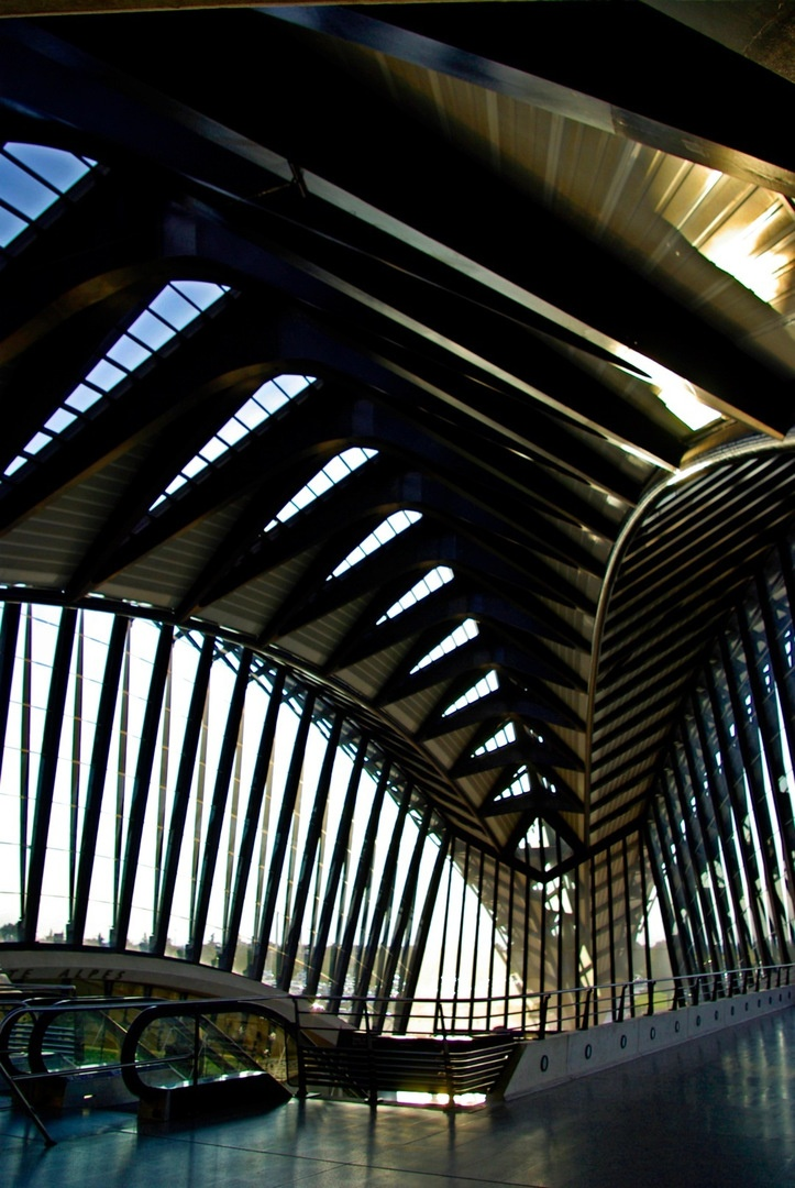 """""""Dans le ventre de la bête"""" (In the belly of the beast), by Le Monolecte. High speed train station at the airport Lyon-St. Exupery, France."""