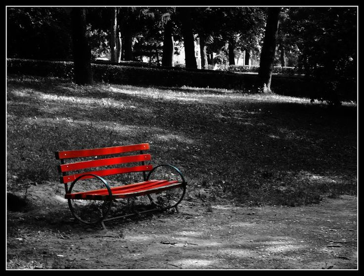 Red Bench | Black, white, and red | Pinterest
