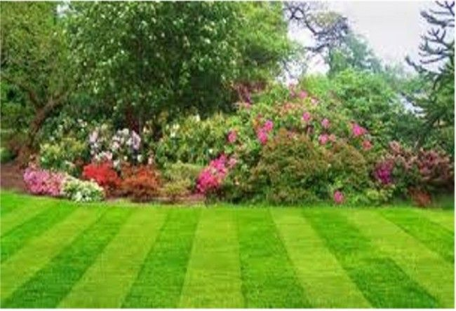 1 Day Garden Maintenance Course This is a classroom based course design to help you understand how to carry out routine maintenance of your garden to keep it looking beautiful all year round 1