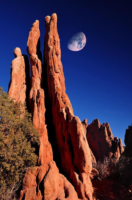 Three Graces at Garden of the Gods by John Hoffman