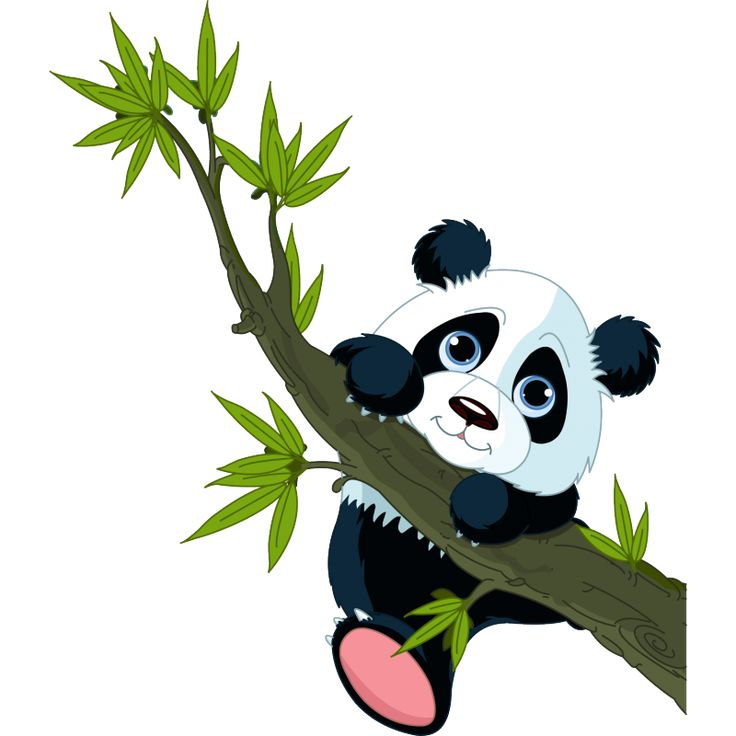 Прикольные картинки панды мультяшные