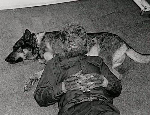 """Lon Chaney Jr. takes a """"cat nap"""" on his dog Vic during the filming of The Wolf Man (1941)"""
