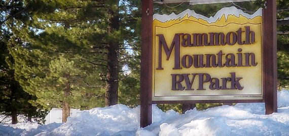 Yosemite National Park CampGround - Cabins - RV Sites - Yosemite Pines