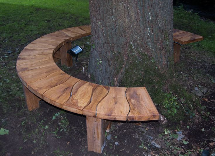 Green Oak Tree Seat Sat Around A Majestic Oak Tree