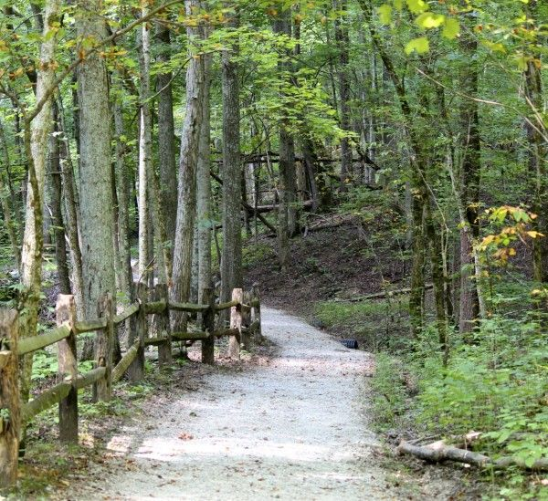 A beautiful place to visit at any time of year - The Cincinnati Nature Center (aka Rowe Woods)