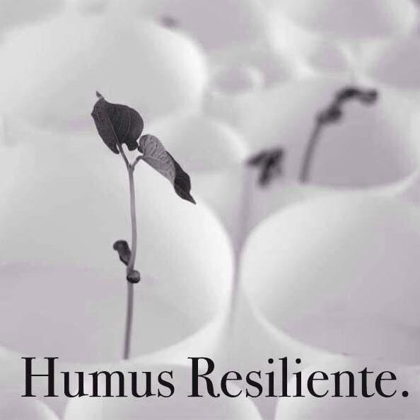 resilienza italiana 2/30