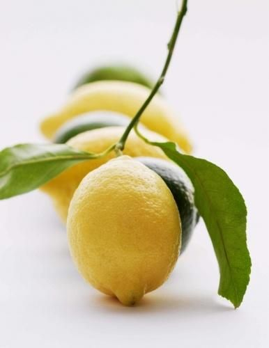 Citrus trees are plentiful here in Southern California. Who doesn't love being able to pick fresh lemons year round?
