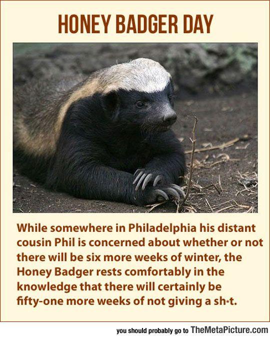Honey Badger Plans