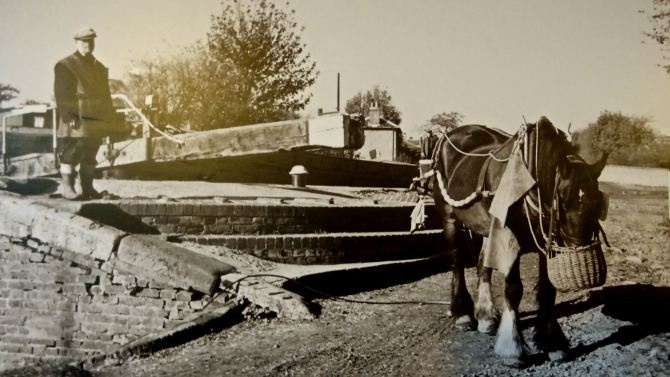 An evocative image of a way of life in decline, horse boating on the Hanwell Flight in the 1950s.