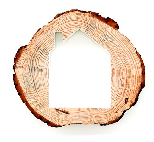 LOVE - TreeHouse — Colectivo da Rainha, playful wall hanging shelve made of a slice of tree