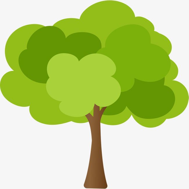 Tree Png 1903 2304 Tanaman Pohon Gambar