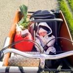 Bakfiets Baby: Onko laatikkopyöräily vauvan kanssa turvallista?