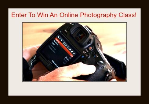 Enter to Win an Online Photography Class from Craftsy!  One lucky SuperGirlSavings fan will win, so click to enter today!  This giveaway ends on March 31st at 12:00 A.M. CST.  #giveaway #photography #onlineclass