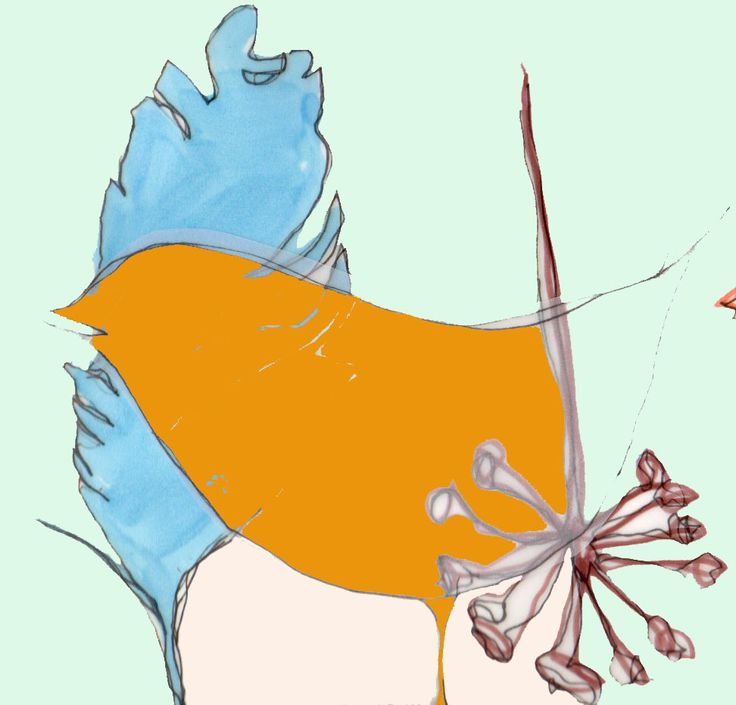#illustration #print #bird #feather #plant #collage #pastel #pastels #design #designer #illustrator #handdrawn #drawing