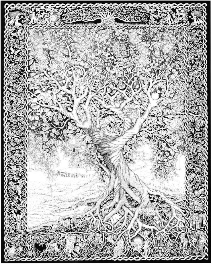 An ancient and wise tree who has stood the test of time, Its branches and roots protect and nurture all forms of life Rotring pens and ink 50 x 60 cm aprox 30 hours to complete. (prob a bit more as...