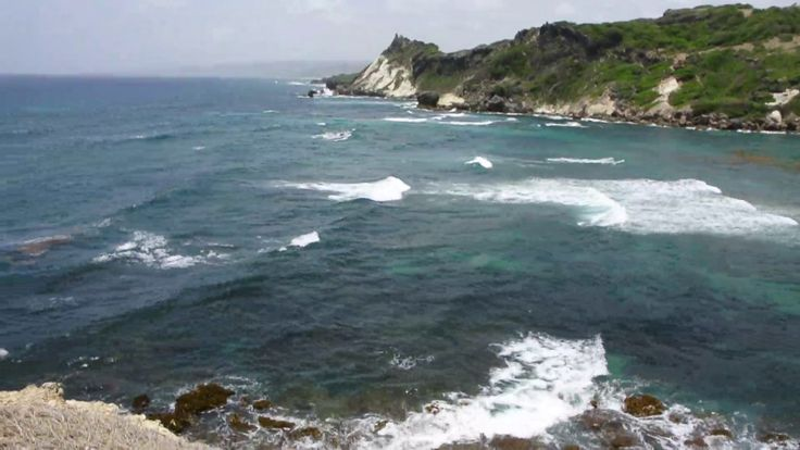 Barbados Cove Bay - Scenic Atlantic Lookout