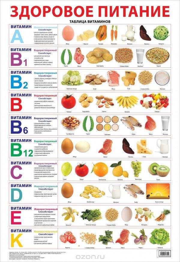 Здоровое питание. Плакат. | Купить школьный учебник в книжном интернет-магазине OZON.ru | 978-5-699-72729-2