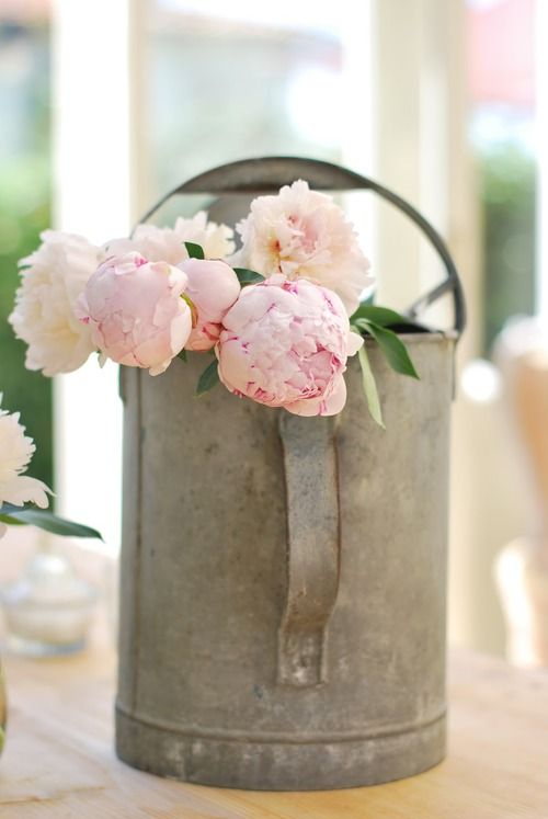 Pink Peonies in Watering Can From: All Things Shabby and Beautiful