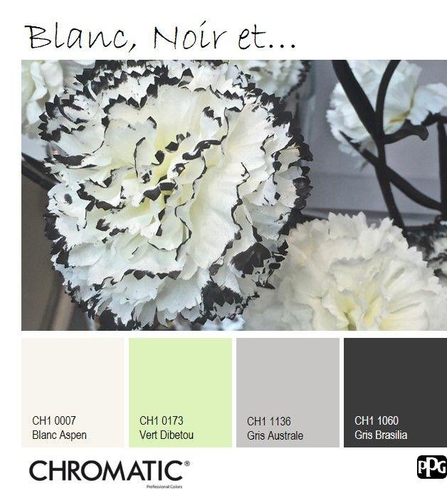 Le Vert Dibetou, pastel et lumineux comme le blanc valorisent le noir, à privilégier en accents pour l'équilibre. www.chromaticstore.com