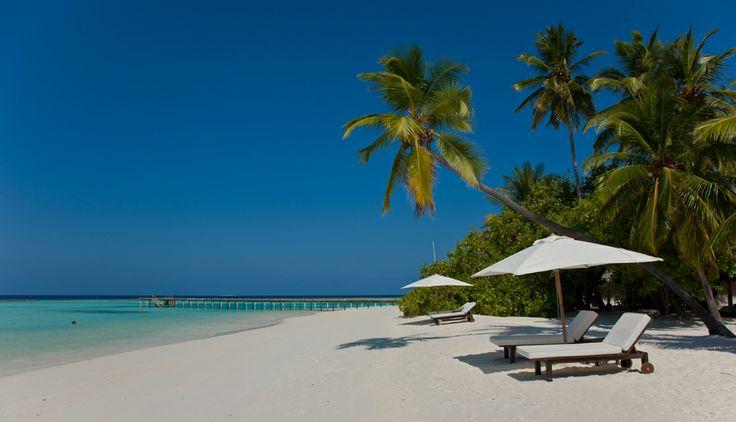 29 novembre 2013: Vakarufalhi, Maldive. Il luogo ideale per coloro che desiderano concedersi una meritata pausa, trascorrendo una vacanza all'insegna del relax a contatto con la natura…
