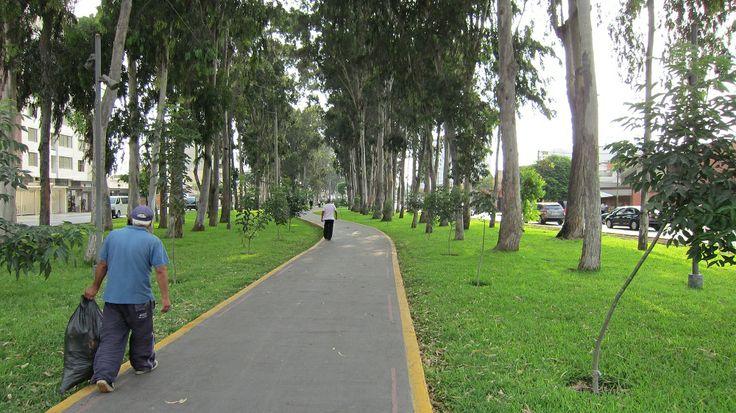 Av. San Borja Norte. Caminantes.