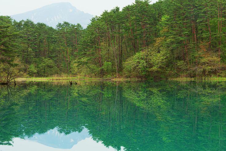 Reflection Lake Goshikinuma at Urabandai  #fukushima #japan