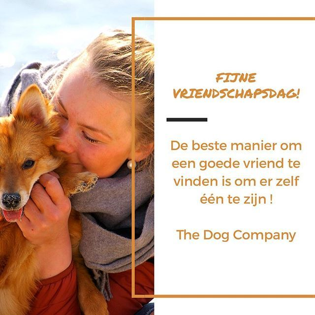 Happy #friendshipday! The best way for finding a best friend is being one yourself 😀. #thedogcompany